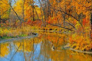 Niakwa CC Commits to Obtaining Audubon Certification